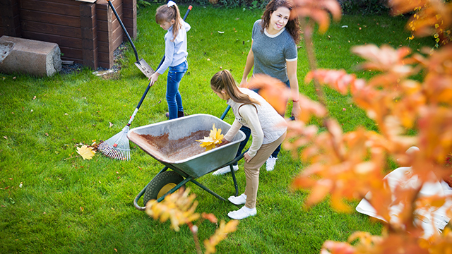 Majka i dve ćerke kupe opalo žuto lišće u kolica i sređuju dvorište