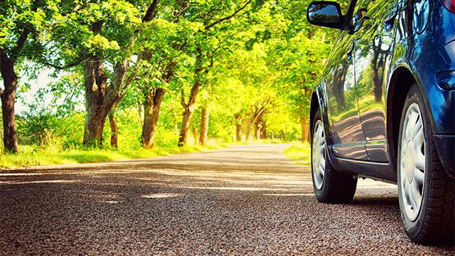Plavi automobil sa točkovima na putu koji je oivičen drvoredom