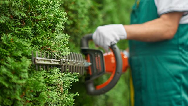 Muškarac u plavom radnom odelu uređuje živicu koristeći trimer za živu ogradu