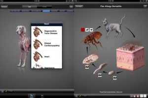 39999-idia-diagnostic-imaging-atlas-small-animal-is-an-app-that-assists-veterinarians-with-overviews-of-conditions-affecting-animals