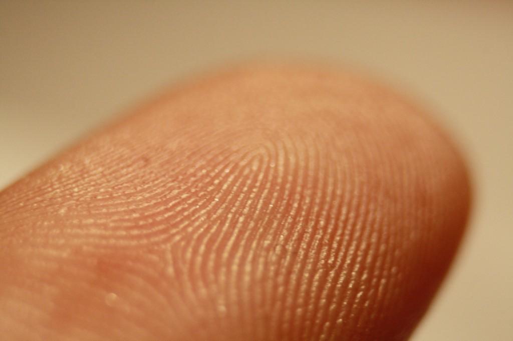 Fingerprint 01